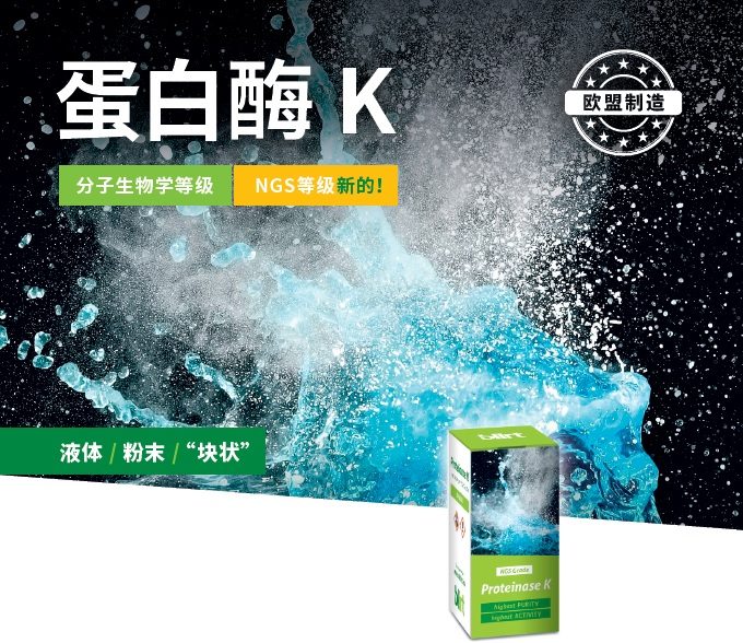 Proteinase K Flyer (Chinese)