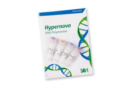 Hypernova DNA Polymerase