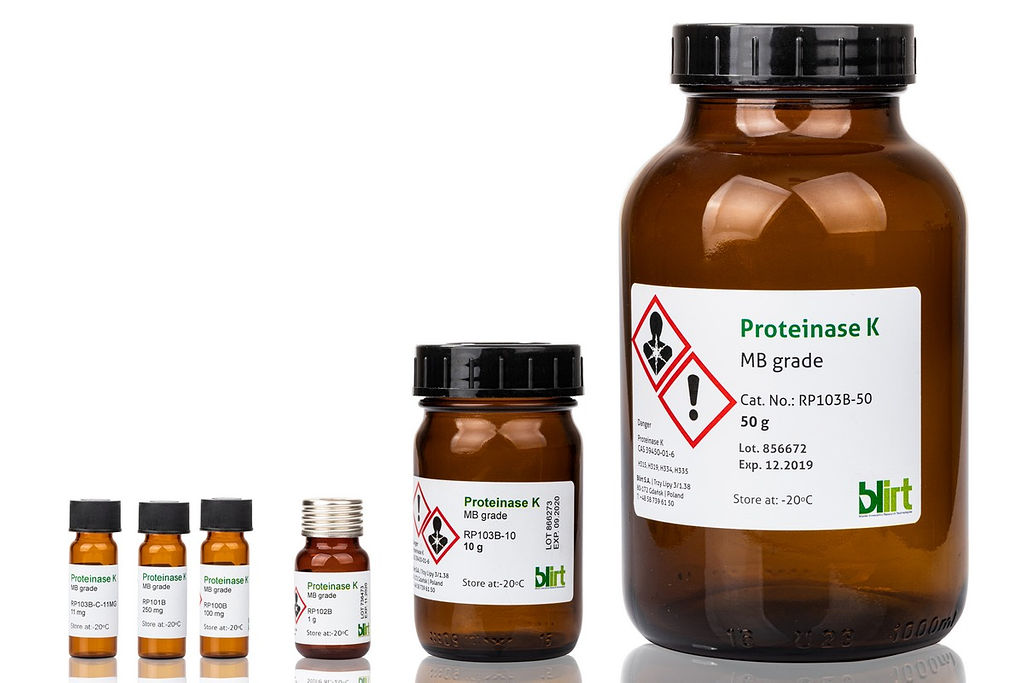 Proteinase K Molecular Biology Grade