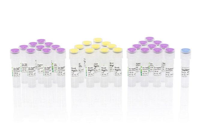 TaqNova DNA Polymerase RP