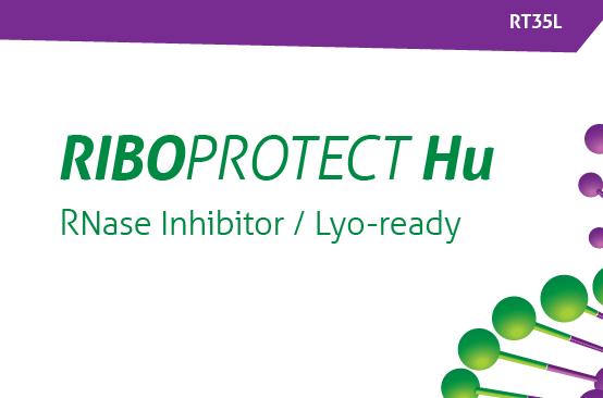 Riboprotect LYO