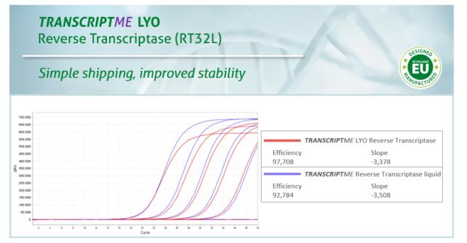TRANSCRIPTme LYO Reverse Transcriptase